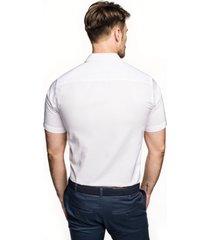 koszula bexley 2488/1 krótki rękaw custom fit biały