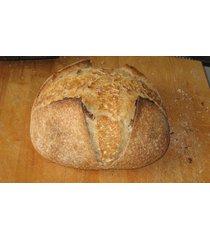 """!!top seller!!san francisco-zourdough sourdough starter- """"sally"""" + many recipes"""