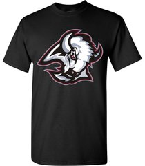 buffalo sabres men's t-shirt tee many colors