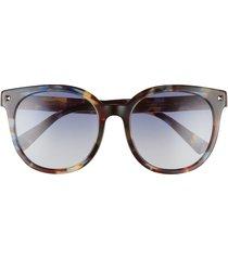valentino 55mm round sunglasses in havana multi/blue gradient at nordstrom