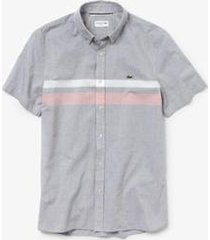 camisa lacoste slim fit masculina
