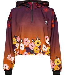 hoodie hoodie multi/mönstrad adidas originals
