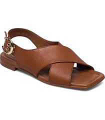 sandals 2703 shoes summer shoes flat sandals brun billi bi