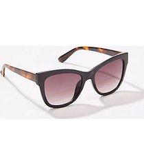 loft cateye sunglasses