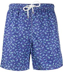 kiton short de natação com estampa de peixes - azul