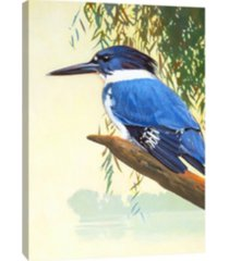 ptm images, belted kingfisher decorative canvas wall art