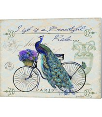 peacock on bicylce ii by jean plout canvas art