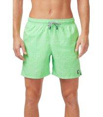 men's tom & teddy gingham print swim trunks