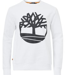sweatshirt core logo crew bb