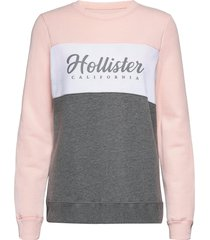 colorblocked logo crew sweat-shirt tröja multi/mönstrad hollister
