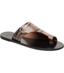 rosa shoes summer shoes flat sandals brun atp atelier