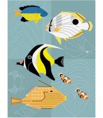 "marie sansone tropical fish squares canvas art - 20"" x 25"""
