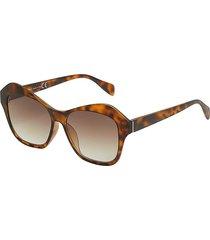 saraghina sunglasses