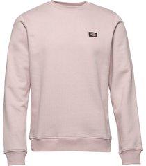 new jersey sweat-shirt tröja rosa dickies