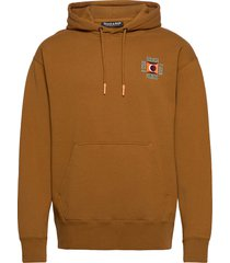 clean felpa hoodie with pop chest embroidery hoodie trui bruin scotch & soda
