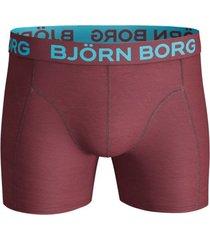 bjorn borg boxers 3-pak seasonal solids zwart-blauw-rood