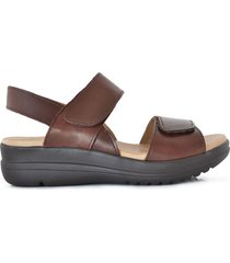 sandalia marrón briganti mujer mogok
