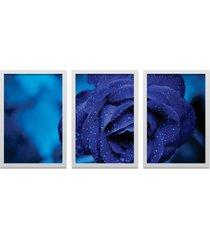 kit 3 quadros los quadros decorativos fotografia flor azul com moldura branca e vidro