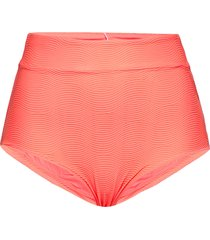 high waisted pant bikinitrosa rosa seafolly