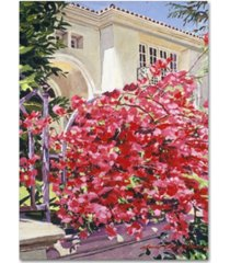 "david lloyd glover 'pink bougainvillea mansion' canvas art - 18"" x 24"""