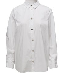kaya shirt ms18