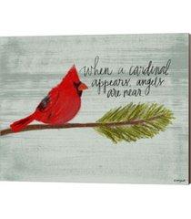 cardinal by katie doucette canvas art