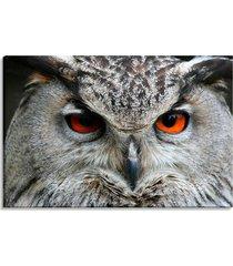 tela decorativa estilo fotografia retrato de coruja - tamanho: 60x90cm (a-l) unico