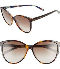 women's tommy hilfiger 57mm gradient cat eye sunglasses - dkhavana/ brown gradient
