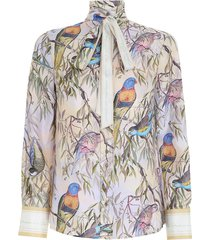 candescent shirt in parakeets