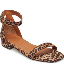 sandals 8715 shoes summer shoes flat sandals brun billi bi
