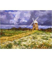 "david lloyd glover english country windmill canvas art - 37"" x 49"""