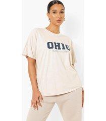 oversized overdye ohio t-shirt, stone