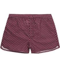 derek rose boxers