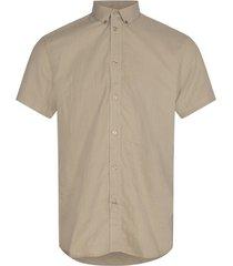 aleksander 8011 shirt