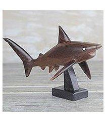 ebony wood sculpture, 'great white shark' (ghana)