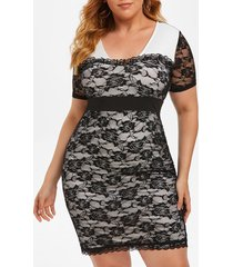 plus size lace sheer plunge fitted dress