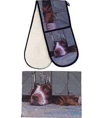 curious spaniel dog 100% cotton 88x18cm double oven glove & 55x70cm tea towel