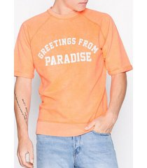 jack & jones jorparadise s/s sweat crew neck t-shirts & linnen ljusorange