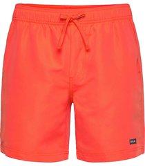 hangout shorts surfshorts orange bula