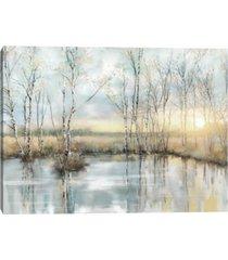 calm reflections by studio arts canvas art print
