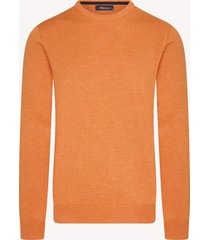 dio rise pullover | ronde hals | katoen | shirtdeal