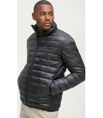 jacket baxter