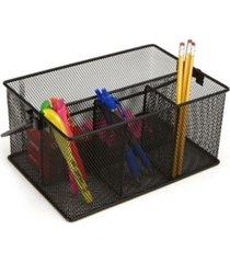 mind reader mesh storage basket & organizer
