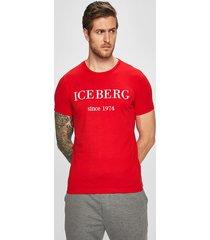 iceberg - t-shirt