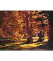 "david lloyd glover golden autumn light canvas art - 37"" x 49"""