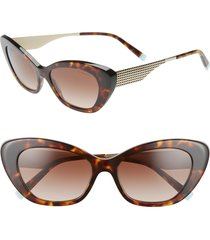women's tiffany & co. diamond point 54mm gradient cat eye sunglasses - havana/ gold gradient