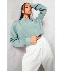 woman korte geborduurde sweater, sage