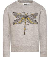 molo grey melange maya girl sweatshirt