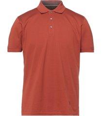 corneliani id polo shirts