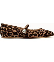 polly plume ballerine bonnie stone zoo leopard